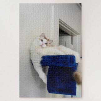 Puzzle de chat de Ragdoll