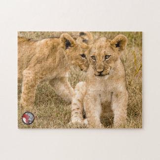 Puzzle de jigzaw de petits animaux de lion, à