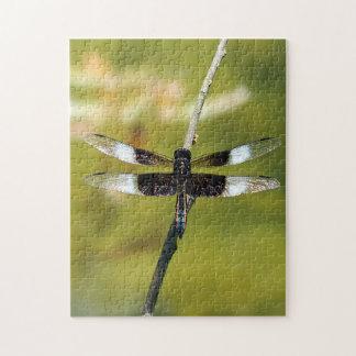 Puzzle de libellule d'écumoire de veuve