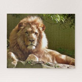 Puzzle de lion