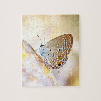 Puzzle de papillon pour un simple ou un couple