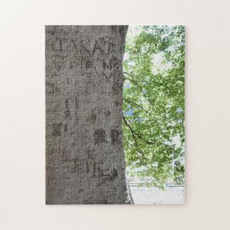 Puzzle Découpé dans une photographie de nature de Central
