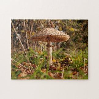 Puzzle denteux de champignon