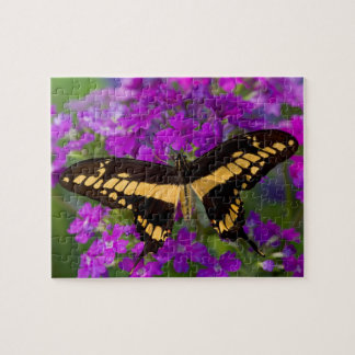 Puzzle Dessus d'un papillon de machaon