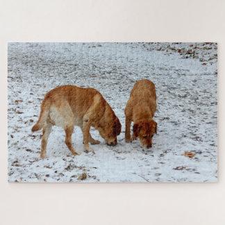 Puzzle Deux Labradors