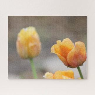 Puzzle Deux-Modifié la tonalité de tulipes