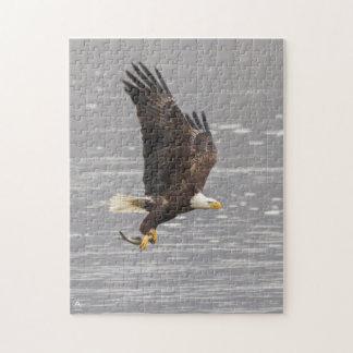 Puzzle Eagle chauve américain