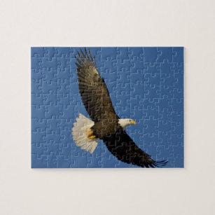 Puzzle Eagle chauve, leucocephalus de Haliaeetus, Homer, 9bc5bd6c6d8