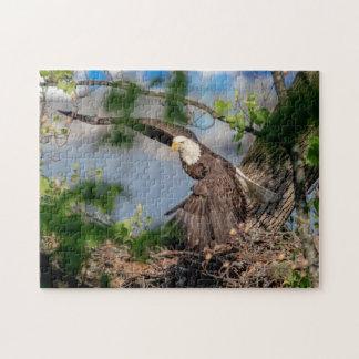 Puzzle Eagle chauve partant du nid