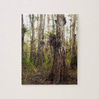 Puzzle Epiphyte Bromeliad dans la forêt de la Floride