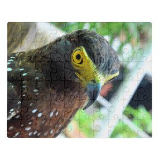 Puzzle Faucon