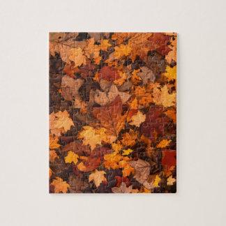 Puzzle feuillage d'automne