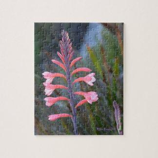 Puzzle Fleur de sur montagne de Tableau