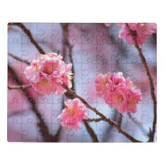 Puzzle Fleurs de cerisier à Séoul, Corée