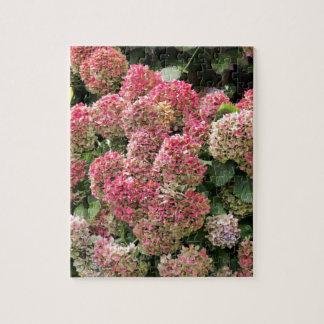 Puzzle Fleurs d'un hortensia de Français (macrophyl