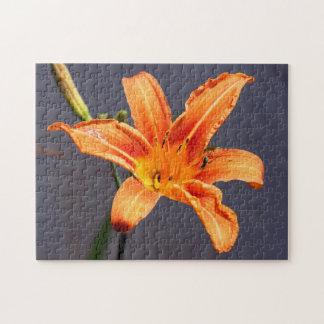 Puzzle floral excentré d'hémérocalle et de
