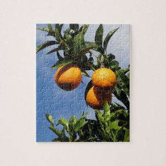 Puzzle Fruits oranges accrochant sur l'arbre contre le