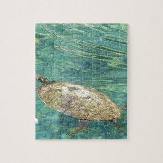 Puzzle grande natation de tortue de rivière