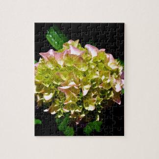 Puzzle Hortensia vert