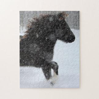 Puzzle islandais de silhouette de cheval