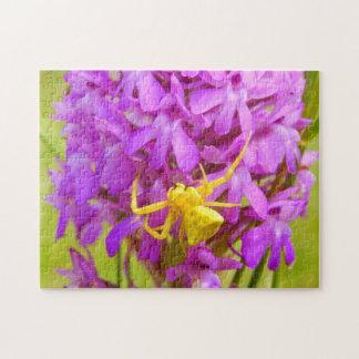 Puzzle jaune de photo d'araignée de crabe avec la