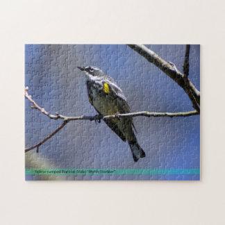 Puzzle jaune d'oiseau de fauvette de Rumped