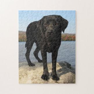 Puzzle La vie est une plage - Labrador noir