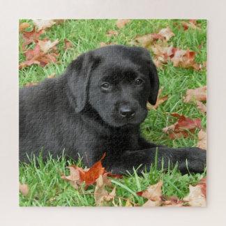 Puzzle Labrador noir - joie d'automne