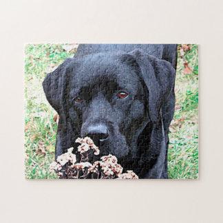Puzzle Labrador noir - prenez du temps