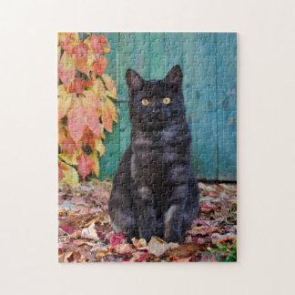 Puzzle Le chaton mignon de chat noir avec le rouge part