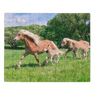 Puzzle Les chevaux de Haflinger avec les poulains mignons