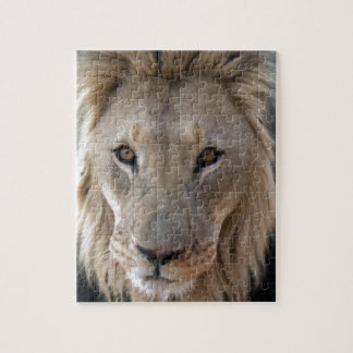 Puzzle Lion africain