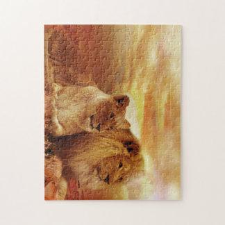 Puzzle Lions africains - safari - faune