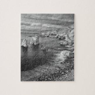 Puzzle Littoral de plage de B&W, la Californie