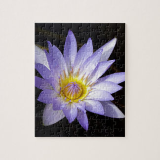 Puzzle lotus bleu du Nil