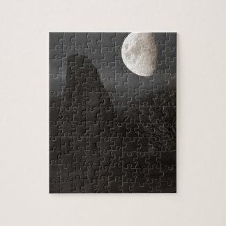 Puzzle lune sur la ruine