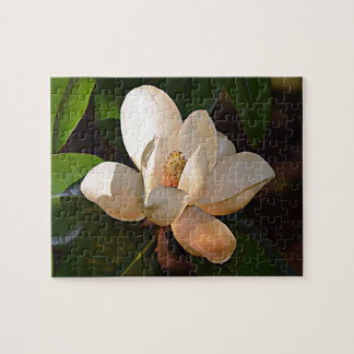 Puzzle Magnolia du sud de la Louisiane