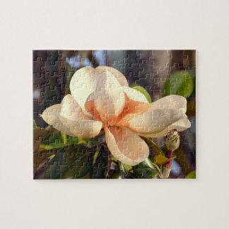 Puzzle Magnolia (le Mississippi et la Louisiane)