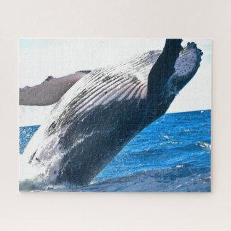 Puzzle majestueux de baleine (520 morceaux)