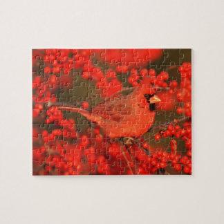 Puzzle Mâle cardinal du nord rouge, IL