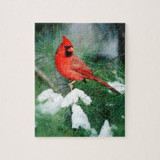 Puzzle Mâle cardinal du nord sur l'arbre, IL
