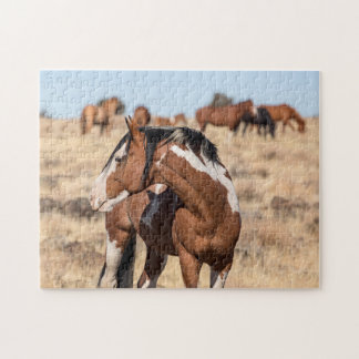Puzzle Mustangs sauvages