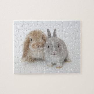 Puzzle Nain de deux Netherland et lapins de la Hollande