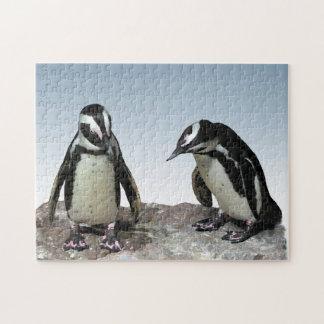 Puzzle noir et blanc d'oiseaux de pingouin