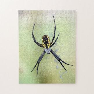 Puzzle noir et jaune d'araignée de jardin