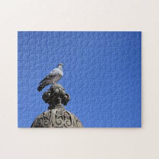 Puzzle Oiseau de New York City de ciel bleu de pigeon de