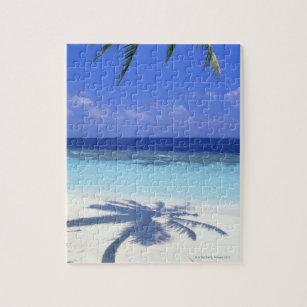 Puzzle Ombre de palmier