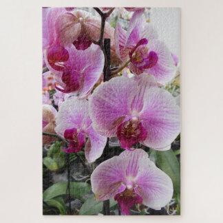 Puzzle Orchidées de mite roses