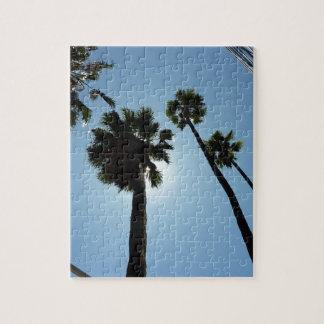 Puzzle Palmiers Los Angeles Hollywood Etats-Unis