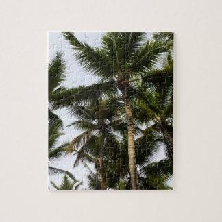 Puzzle Palmiers tropicaux d'été
